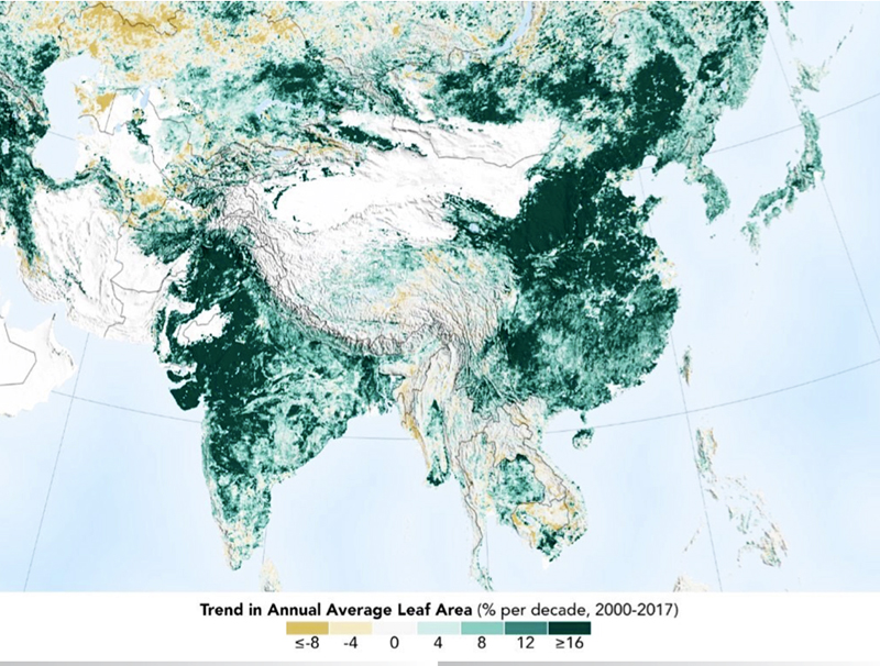 L'incremento del verde
